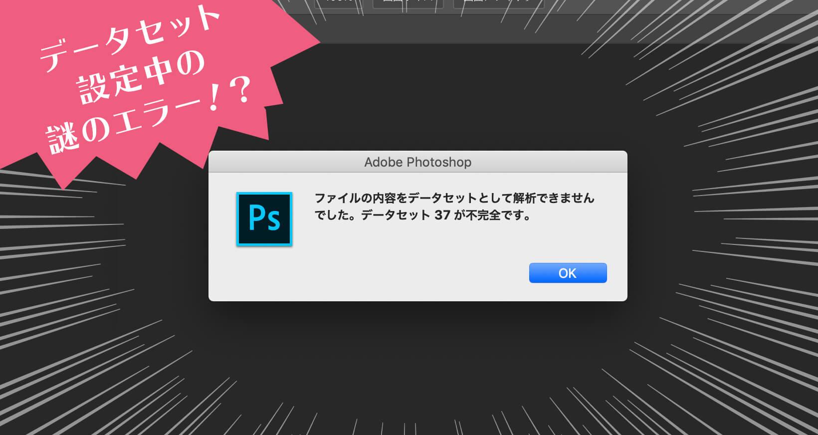 Photoshop データセット 不完全です ファイルの内容をデータセットとして解析できませんでした